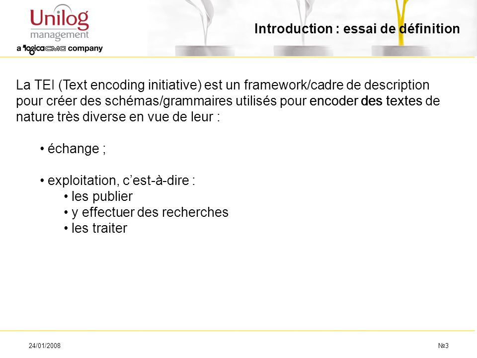 24/01/20083 Introduction : essai de définition La TEI (Text encoding initiative) est un framework/cadre de description pour créer des schémas/grammair