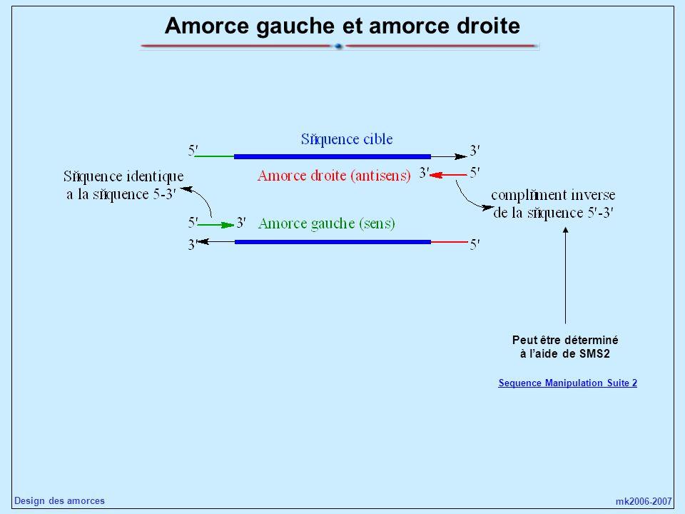 mk2006-2007 Design des amorces Amorce gauche et amorce droite Peut être déterminé à laide de SMS2 Sequence Manipulation Suite 2