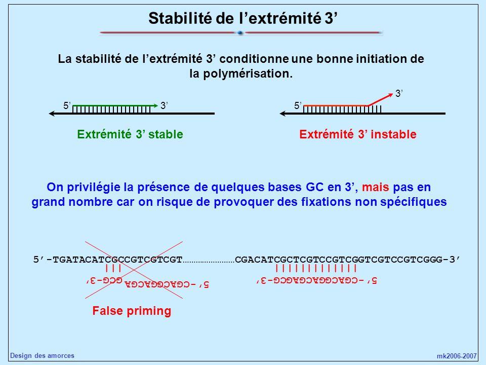 mk2006-2007 Design des amorces Stabilité de lextrémité 3 La stabilité de lextrémité 3 conditionne une bonne initiation de la polymérisation. 535 3 Ext