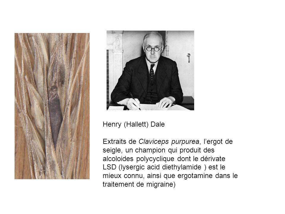Henry (Hallett) Dale Extraits de Claviceps purpurea, lergot de seigle, un champion qui produit des alcoloides polycyclique dont le dérivate LSD (lyser
