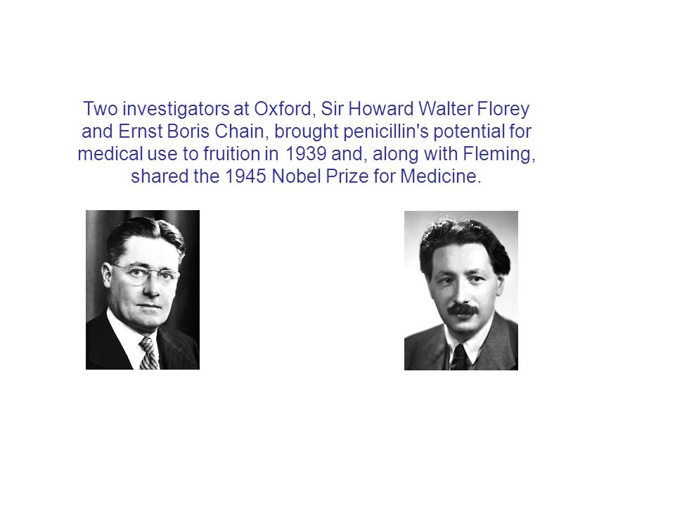 Two investigators at Oxford, Sir Howard Walter Florey and Ernst Boris Chain, brought penicillin's potential for medical use to fruition in 1939 and, a