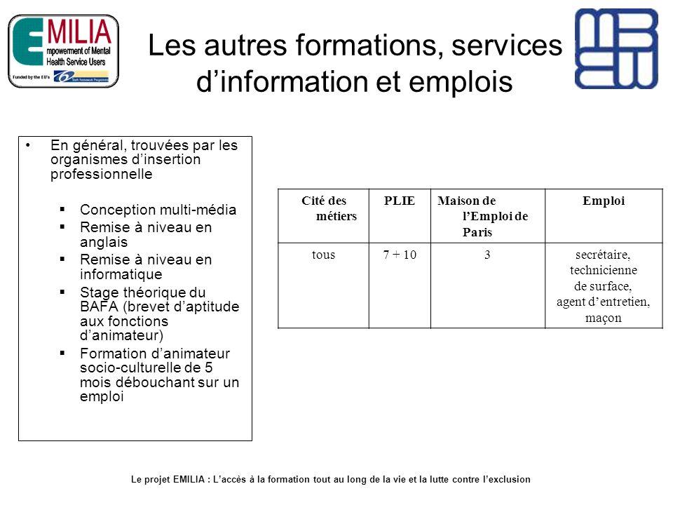 Les autres formations, services dinformation et emplois En général, trouvées par les organismes dinsertion professionnelle Conception multi-média Remi