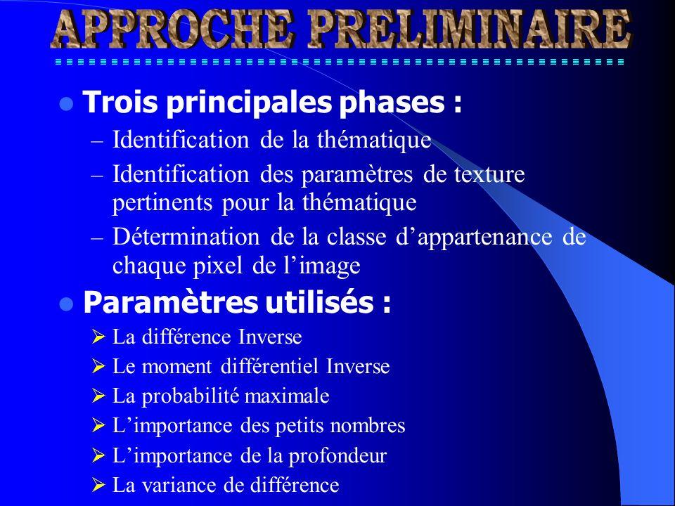 Trois principales phases : – Identification de la thématique – Identification des paramètres de texture pertinents pour la thématique – Détermination