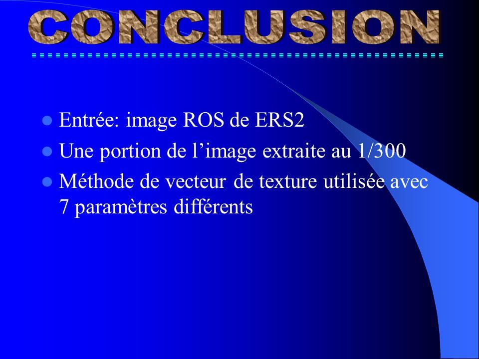 Entrée: image ROS de ERS2 Une portion de limage extraite au 1/300 Méthode de vecteur de texture utilisée avec 7 paramètres différents