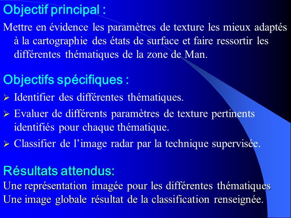Résultats attendus: Une représentation imagée pour les différentes thématiques Une image globale résultat de la classification renseignée.