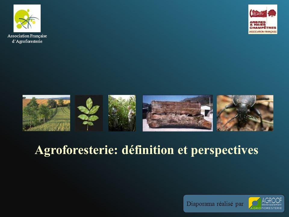 Agroforesterie: définition et perspectives Diaporama réalisé par Association Française dAgroforesterie