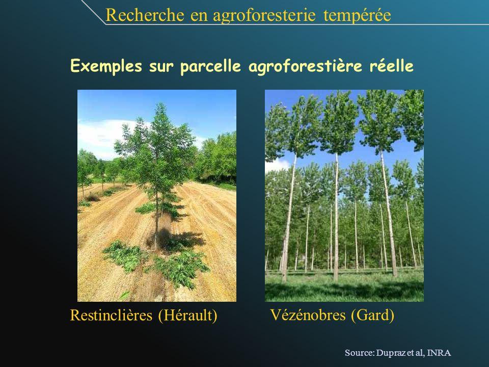 Restinclières (Hérault) Vézénobres (Gard) Recherche en agroforesterie tempérée Exemples sur parcelle agroforestière réelle Source: Dupraz et al, INRA