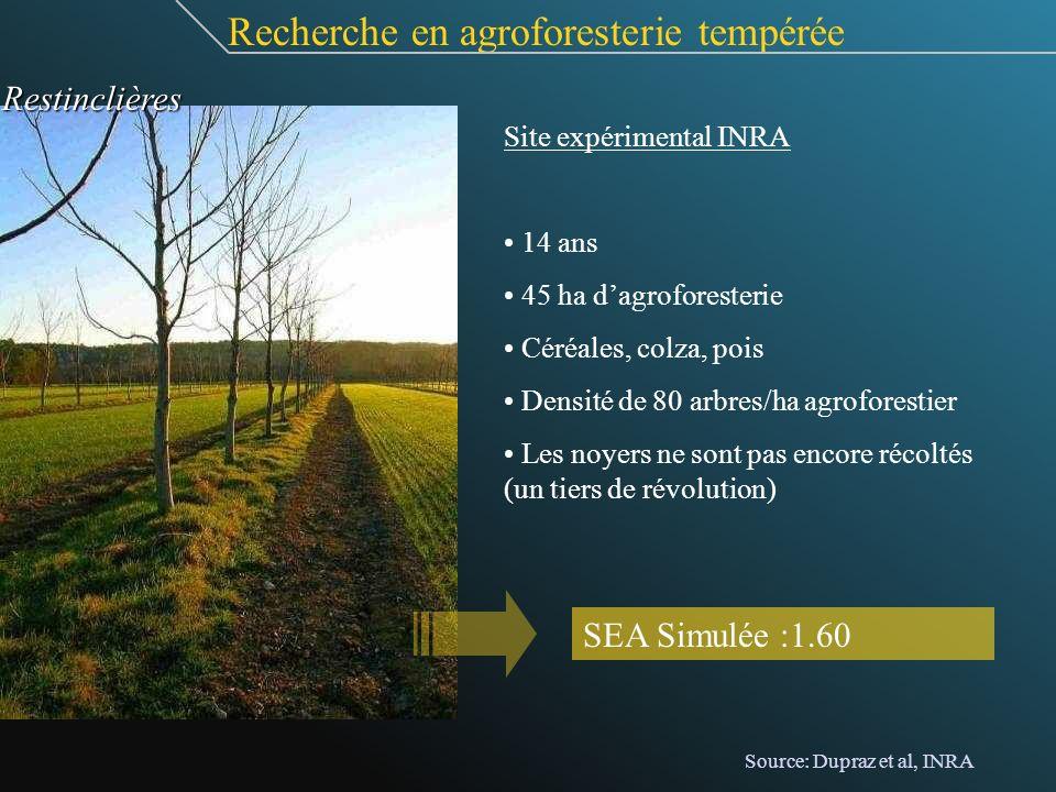 Site expérimental INRA 14 ans 45 ha dagroforesterie Céréales, colza, pois Densité de 80 arbres/ha agroforestier Les noyers ne sont pas encore récoltés