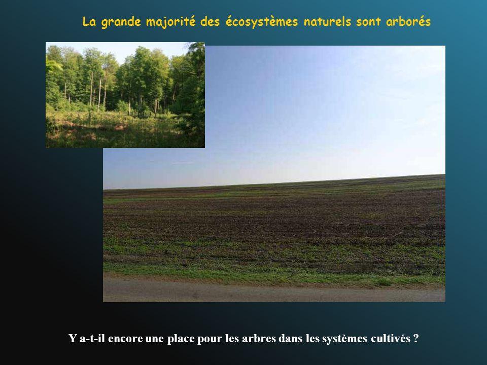 Y a-t-il encore une place pour les arbres dans les systèmes cultivés ? La grande majorité des écosystèmes naturels sont arborés