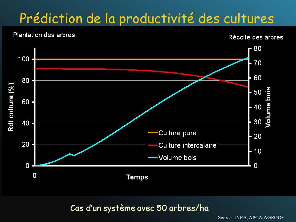 Prédiction de la productivité des cultures Cas dun système avec 50 arbres/ha Source: INRA, APCA,AGROOF