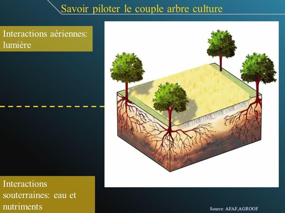 Savoir piloter le couple arbre culture Interactions aériennes: lumière Interactions souterraines: eau et nutriments Source: AFAF,AGROOF