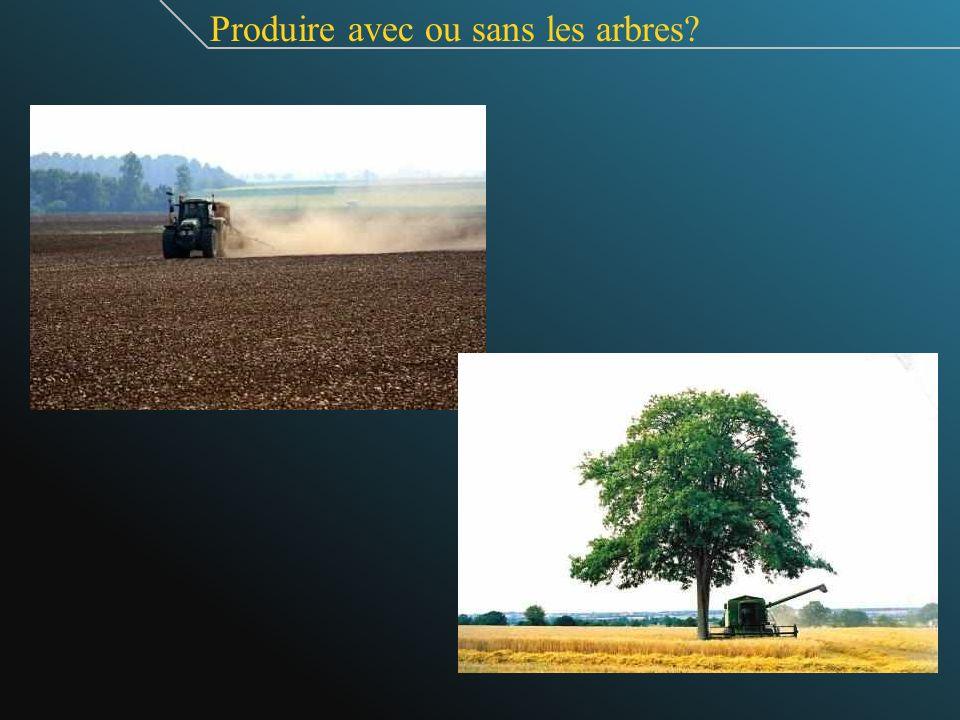 Produire avec ou sans les arbres?