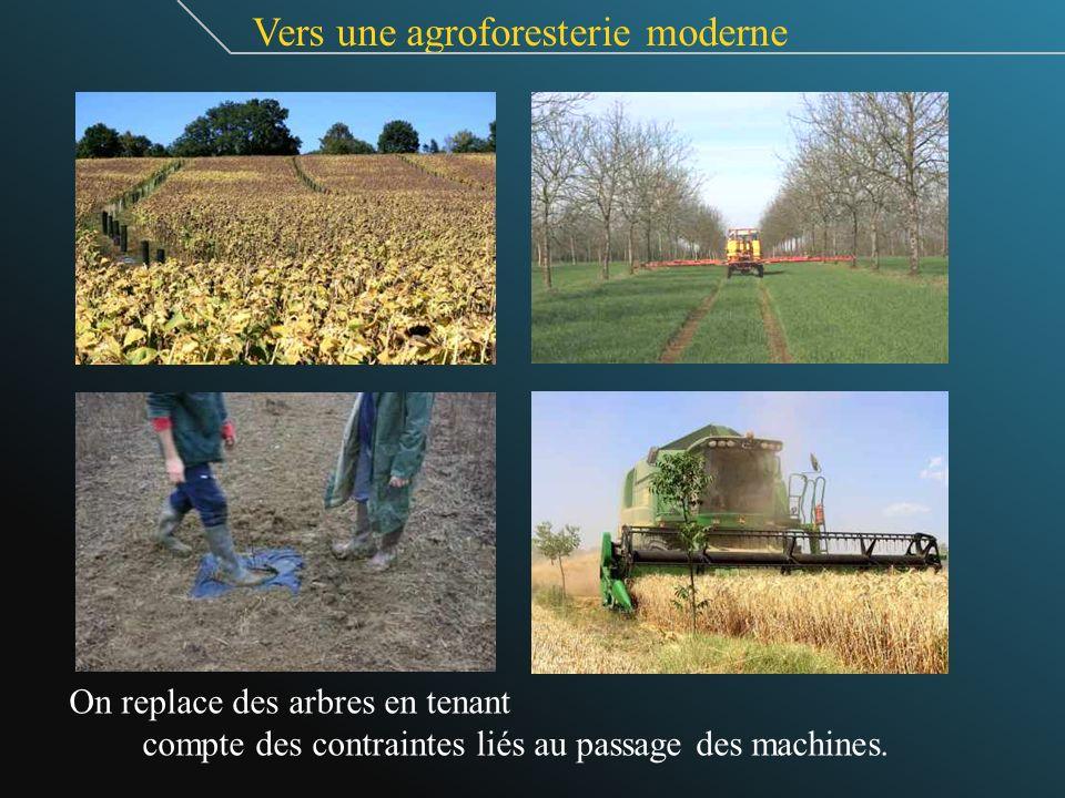 Vers une agroforesterie moderne On replace des arbres en tenant compte des contraintes liés au passage des machines.