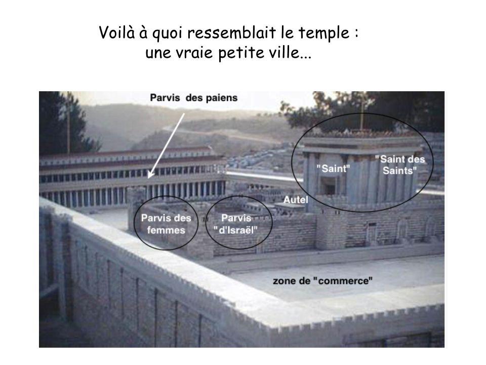 Voilà à quoi ressemblait le temple : une vraie petite ville...