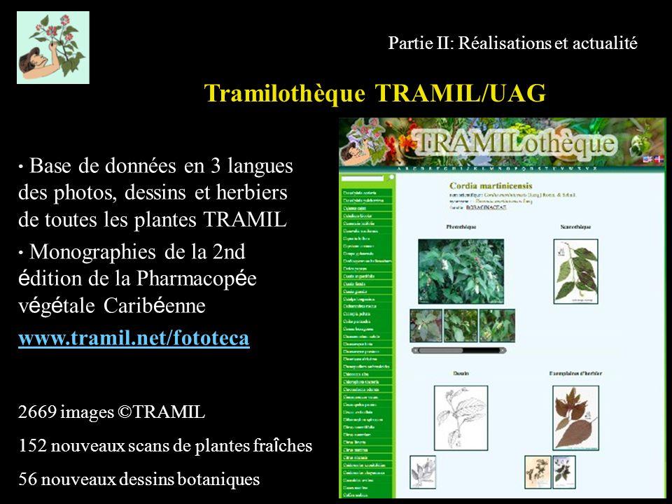 Partie II: Réalisations et actualité Base de données en 3 langues des photos, dessins et herbiers de toutes les plantes TRAMIL Monographies de la 2nd