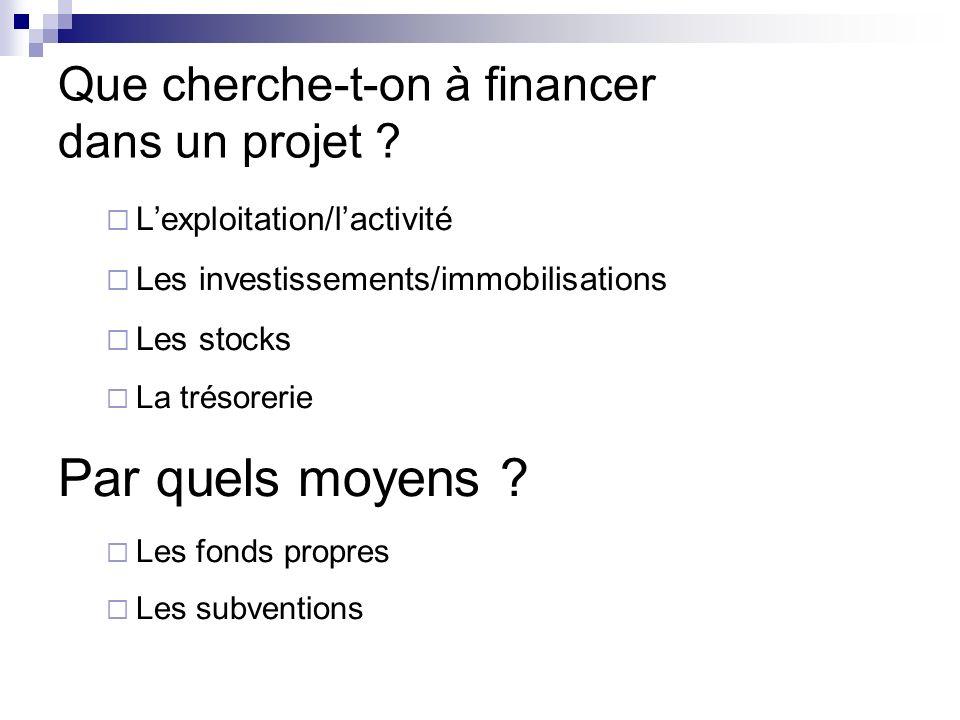 Que cherche-t-on à financer dans un projet ? Lexploitation/lactivité Les investissements/immobilisations Les stocks La trésorerie Par quels moyens ? L