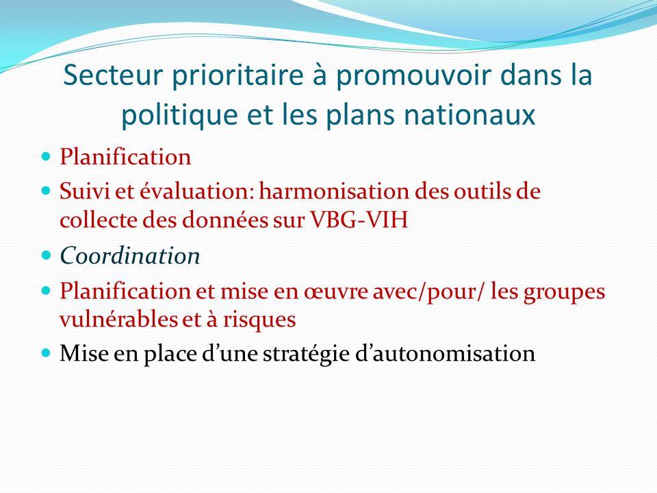 Points dentrée pour influencer les politiques et plans nationaux sur le VBG-VIH Révision du plan stratégique de lutte contre le VIH – SIDA 2013-2017 (4 ème trimestre 2013); Revue de la stratégie nationale de lutte contre les VBG (2014); Plans annuels VBG et VIH et SSR