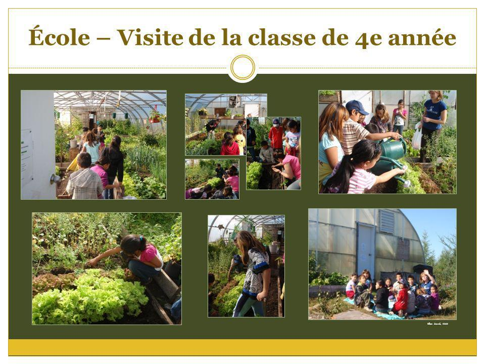École – Visite de la classe de 4e année Ellen Avard, 2012