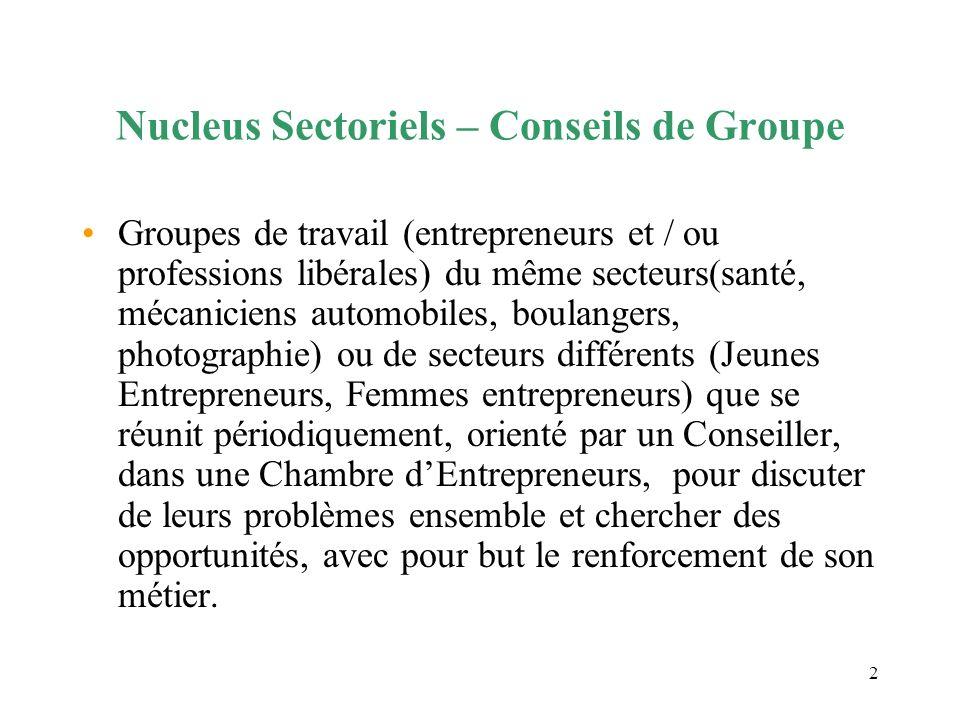 2 Nucleus Sectoriels – Conseils de Groupe Groupes de travail (entrepreneurs et / ou professions libérales) du même secteurs(santé, mécaniciens automob