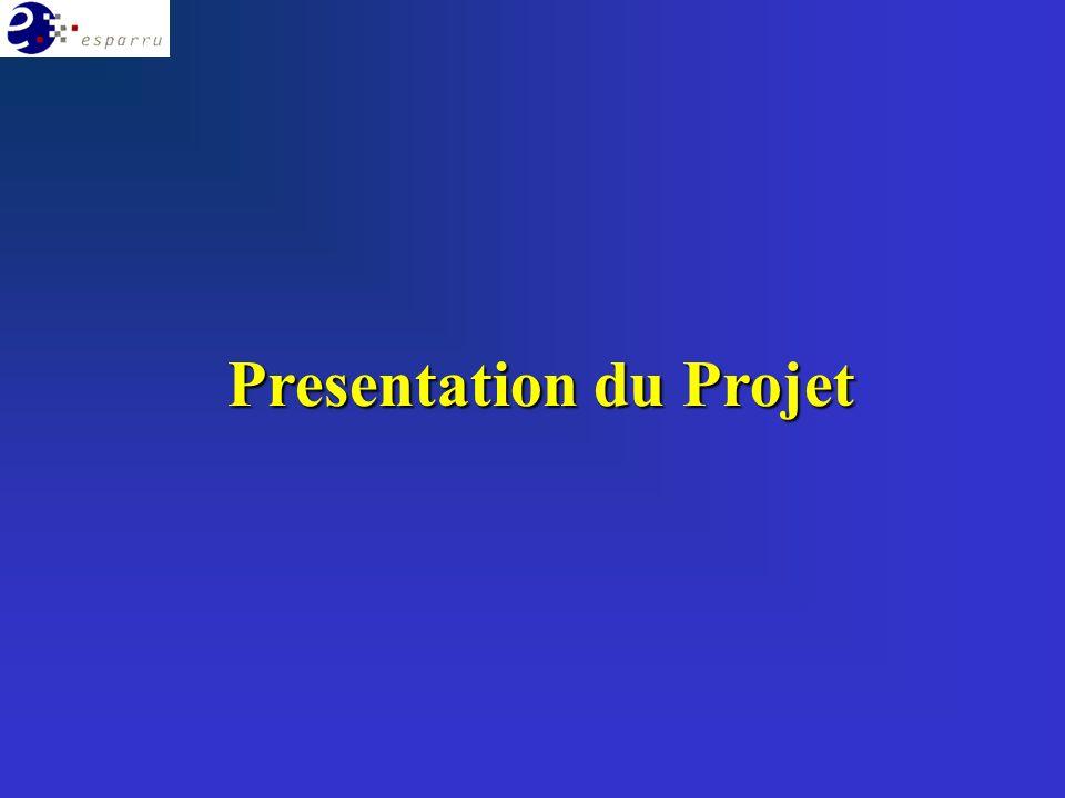 Elaboration dune enquête (1400 foyers) sur les besoins non satisfaits (NGE)