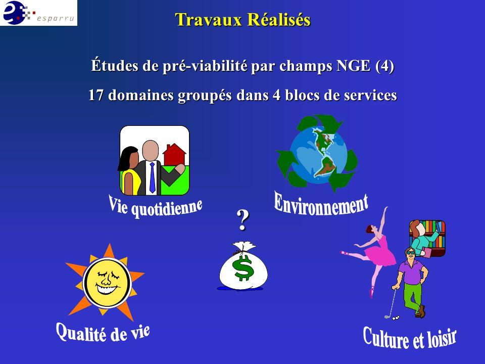 Études de pré-viabilité par champs NGE (4) 17 domaines groupés dans 4 blocs de services Travaux Réalisés ?