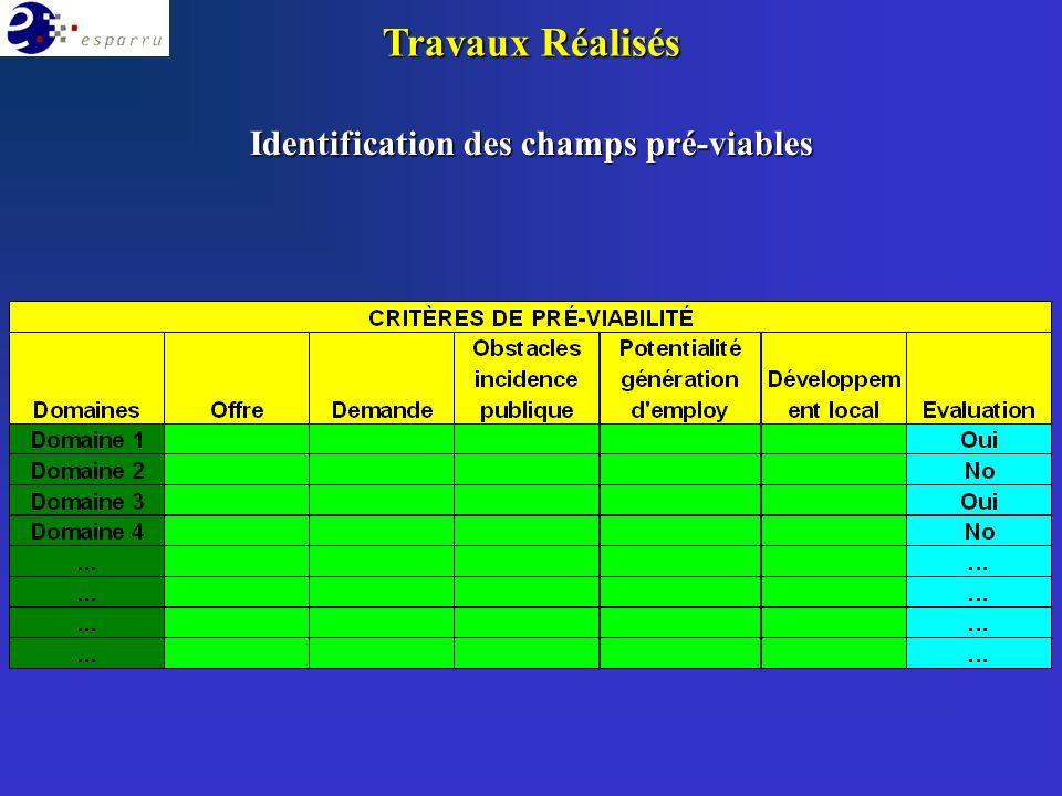 Identification des champs pré-viables Travaux Réalisés