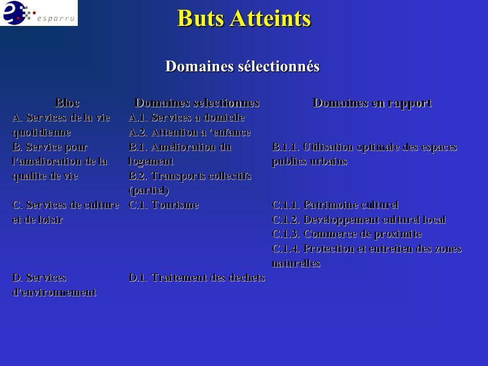 Buts Atteints Domaines sélectionnés