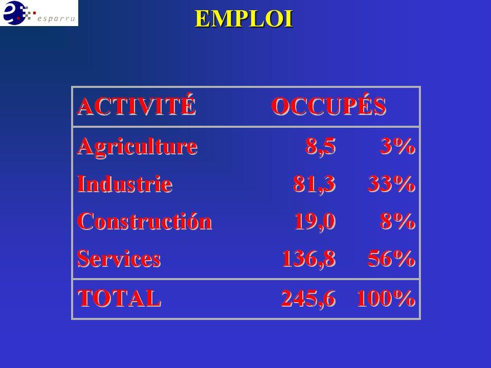 Conseil Général RégionsMairiesPUBLIC Iniative sociale Agents économiques PRIVÉ Initiative locale (Municipalités/Agences de Développement locales/Conseil Général) avec partenariat public/privé