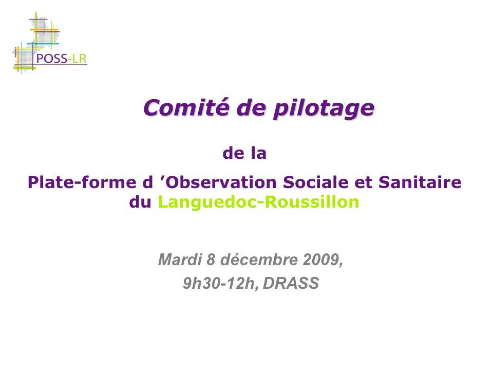 Comité de pilotage du 8 décembre 2009 de la plate-forme d observation sociale et sanitaire en Languedoc-Roussillon Etude sur « les revenus des personnes âgées » Groupe de travail réuni le 8 juin 2009 - 7 participants Piloté par lInsee Avis du Comité technique : Intérêt de l étude conforté Nouvelle réunion à planifier en début d année