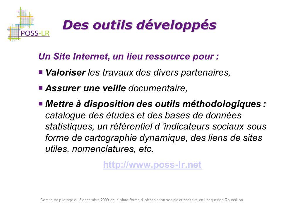 Comité de pilotage du 8 décembre 2009 de la plate-forme d observation sociale et sanitaire en Languedoc-Roussillon Un Site Internet, un lieu ressource