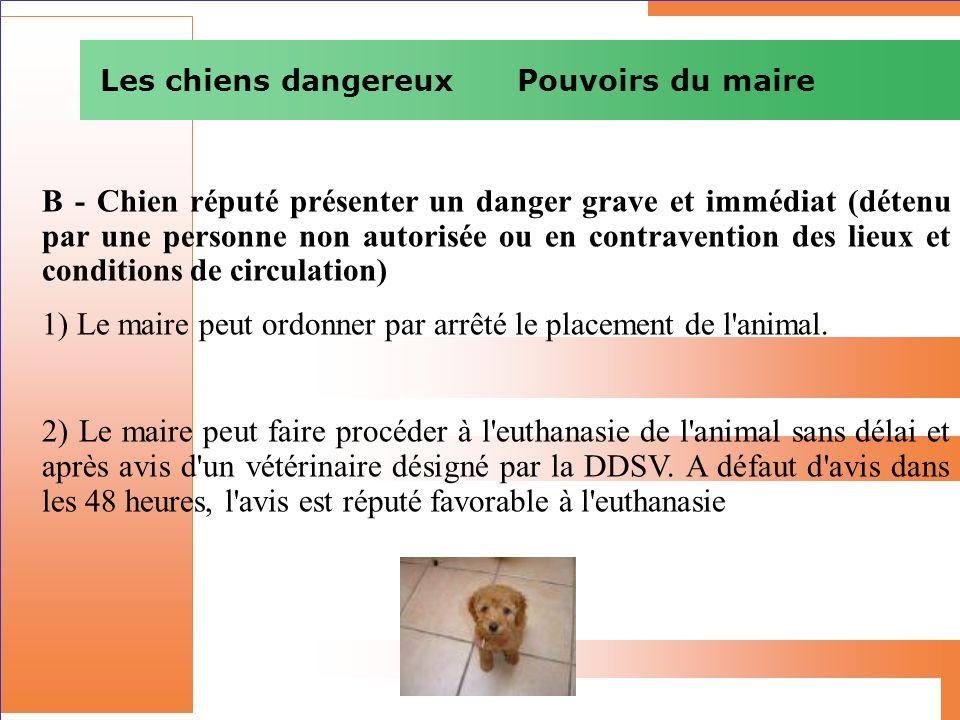 Les chiens dangereux Pouvoirs du maire B - Chien réputé présenter un danger grave et immédiat (détenu par une personne non autorisée ou en contraventi