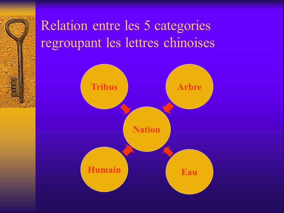 Relation entre les 5 categories regroupant les lettres chinoises TribusArbre Nation Humain Eau