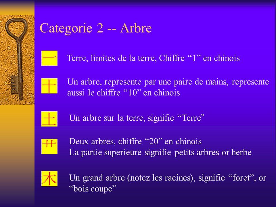 Categorie 2 -- Arbre Terre, limites de la terre, Chiffre 1 en chinois Un arbre, represente par une paire de mains, represente aussi le chiffre 10 en c