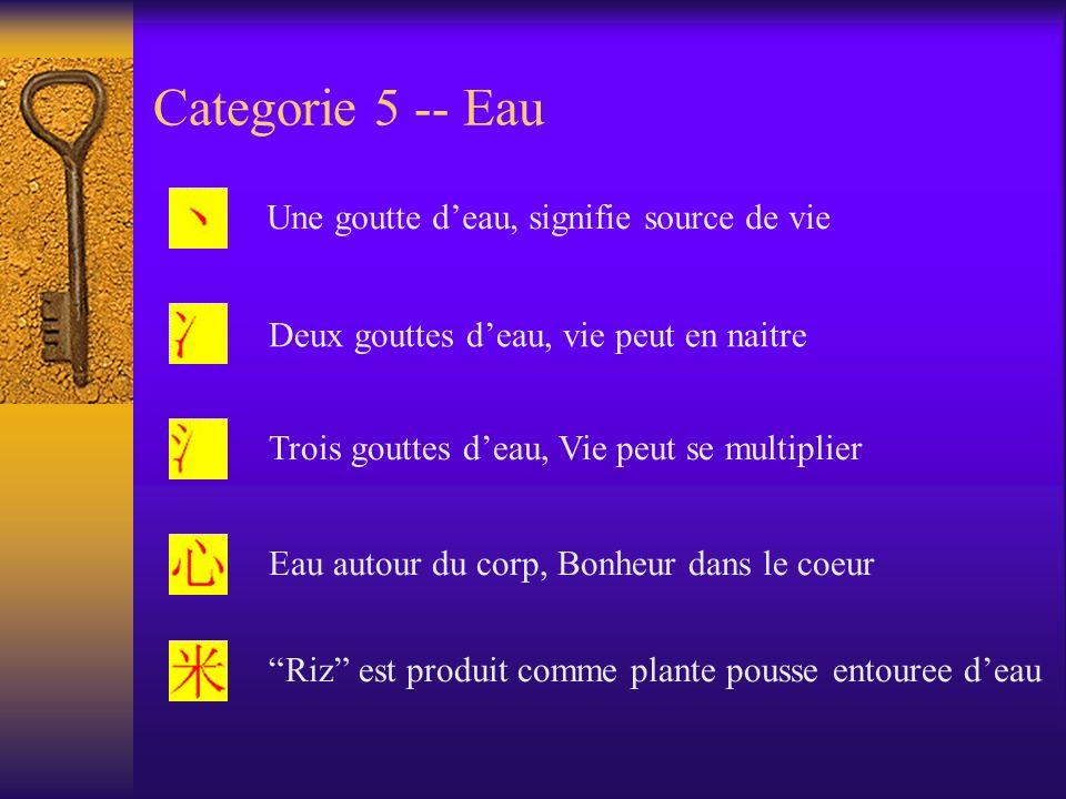 Categorie 5 -- Eau Une goutte deau, signifie source de vie Deux gouttes deau, vie peut en naitre Trois gouttes deau, Vie peut se multiplier Eau autour