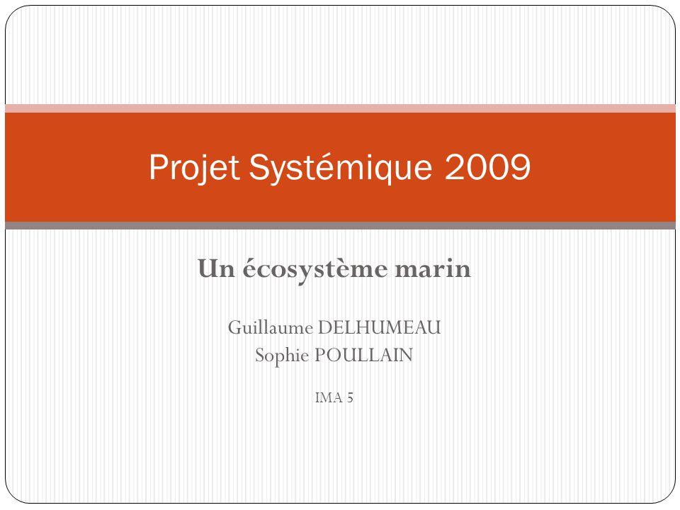 Un écosystème marin Guillaume DELHUMEAU Sophie POULLAIN IMA 5 Projet Systémique 2009