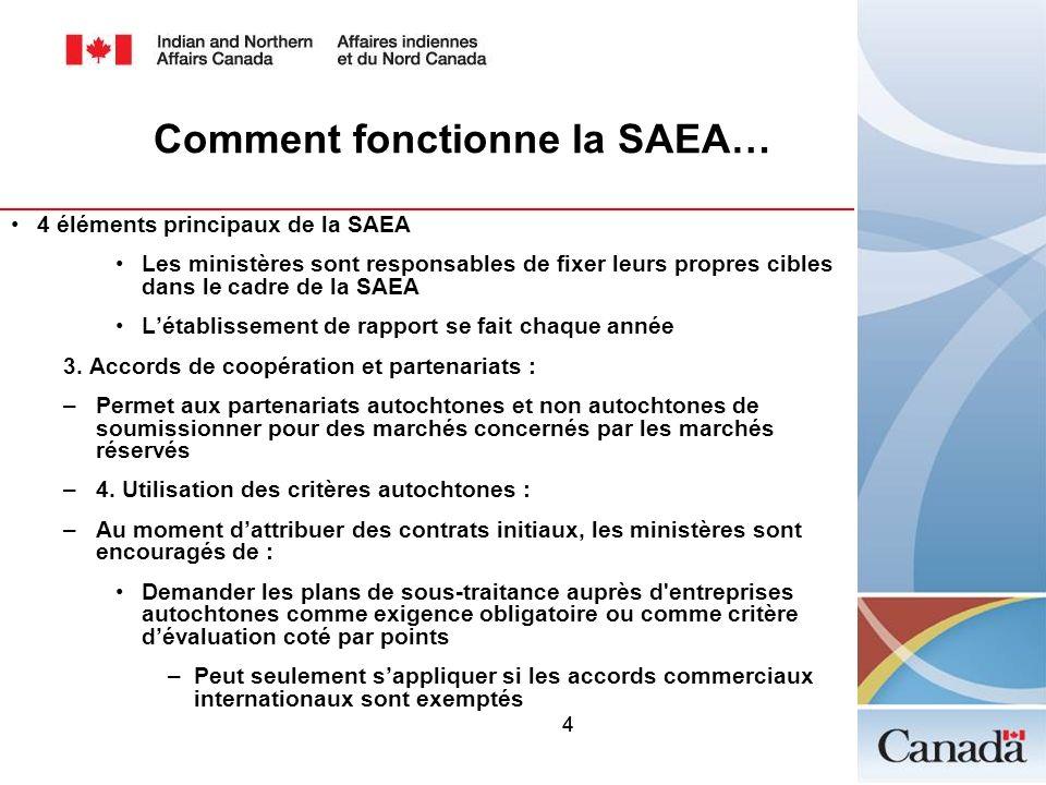 44 Comment fonctionne la SAEA… 4 éléments principaux de la SAEA Les ministères sont responsables de fixer leurs propres cibles dans le cadre de la SAE