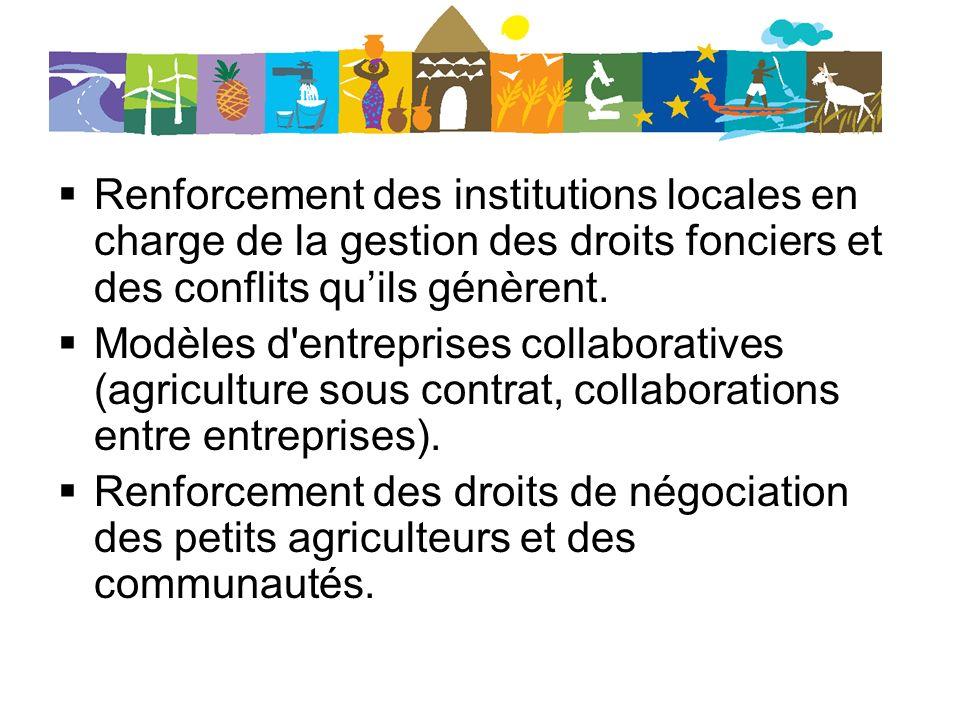 Renforcement des institutions locales en charge de la gestion des droits fonciers et des conflits quils génèrent. Modèles d'entreprises collaboratives