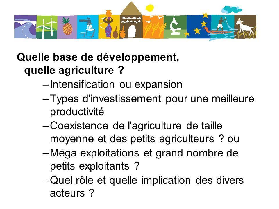 Quelle base de développement, quelle agriculture ? –Intensification ou expansion –Types d'investissement pour une meilleure productivité –Coexistence