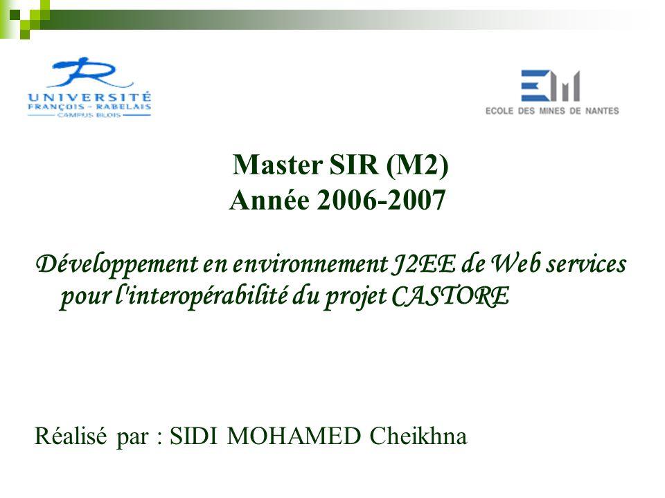 Développement en environnement J2EE de Web services pour l'interopérabilité du projet CASTORE Réalisé par : SIDI MOHAMED Cheikhna Master SIR (M2) Anné