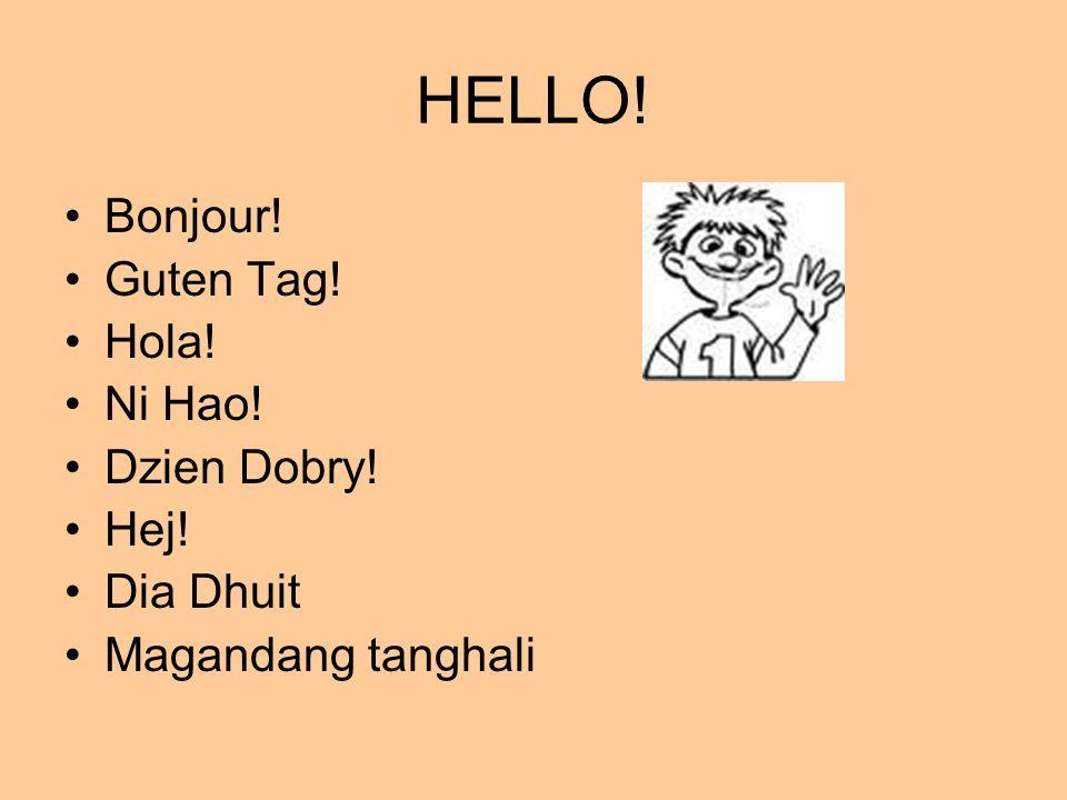 HELLO! Bonjour! Guten Tag! Hola! Ni Hao! Dzien Dobry! Hej! Dia Dhuit Magandang tanghali