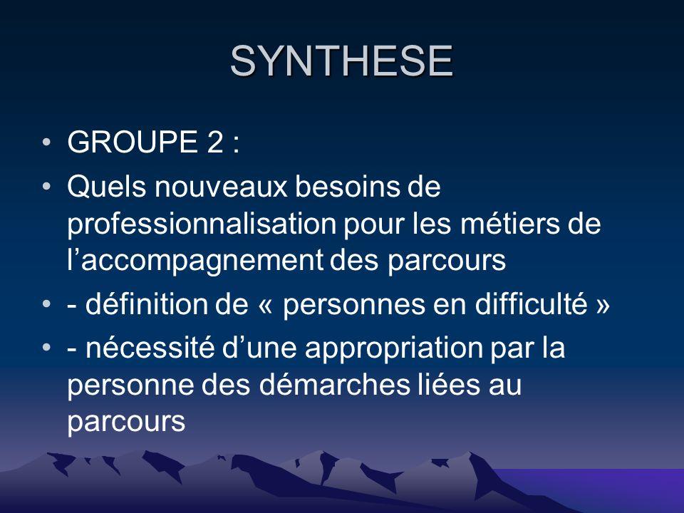 SYNTHESE GROUPE 2 : Quels nouveaux besoins de professionnalisation pour les métiers de laccompagnement des parcours - définition de « personnes en difficulté » - nécessité dune appropriation par la personne des démarches liées au parcours