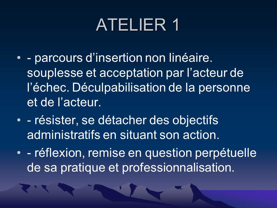 ATELIER 1 - parcours dinsertion non linéaire. souplesse et acceptation par lacteur de léchec.