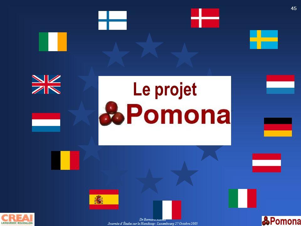 Dr Bernard Azéma Journée dÉtudes sur le Handicap - Luxembourg 27 Octobre 2005 45 Le projet