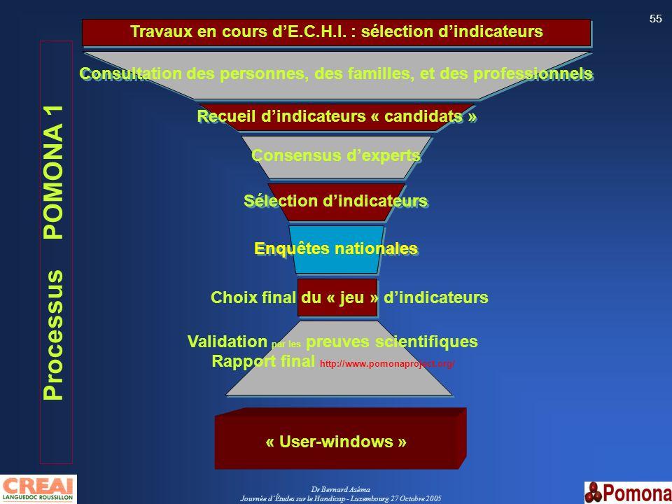 Dr Bernard Azéma Journée dÉtudes sur le Handicap - Luxembourg 27 Octobre 2005 55 Consultation des personnes, des familles, et des professionnels Conse