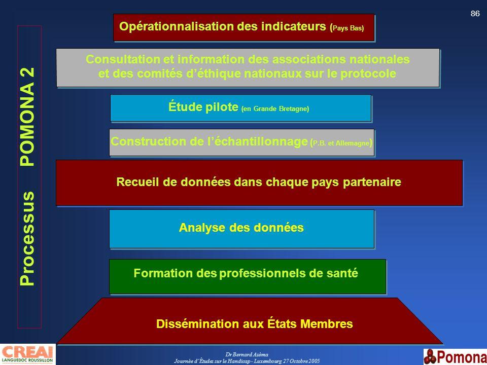 Dr Bernard Azéma Journée dÉtudes sur le Handicap - Luxembourg 27 Octobre 2005 86 Consultation et information des associations nationales et des comité