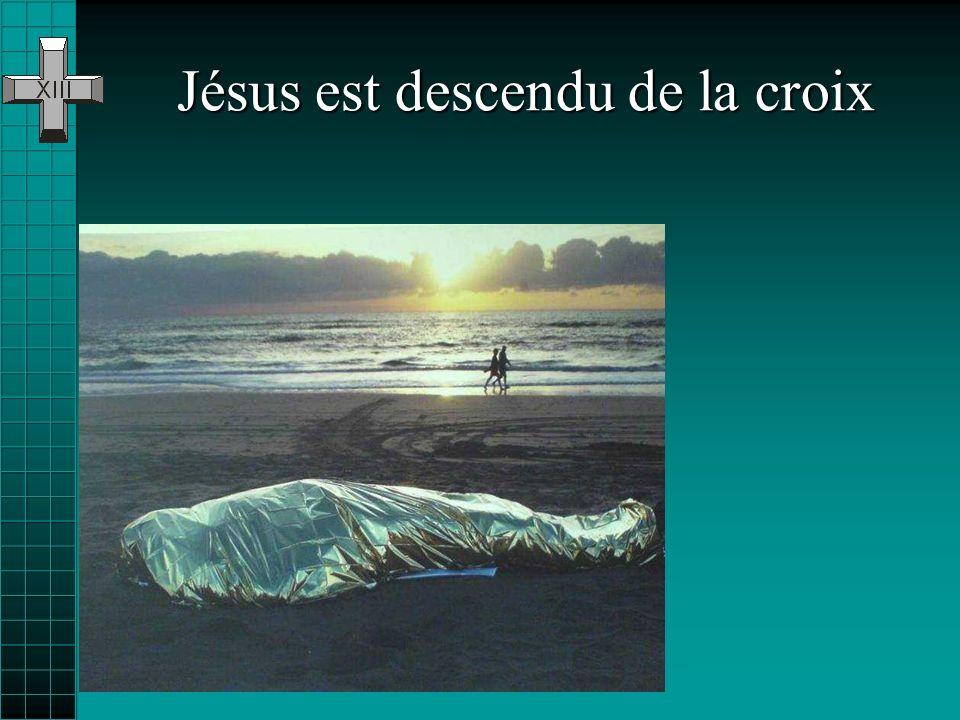 Pour les autorités de lépoque, Jésus na mérité quun bref rapport officiel. Elles nont pas su voir la Vérité : Nous lavons vu comme méprisable et sans