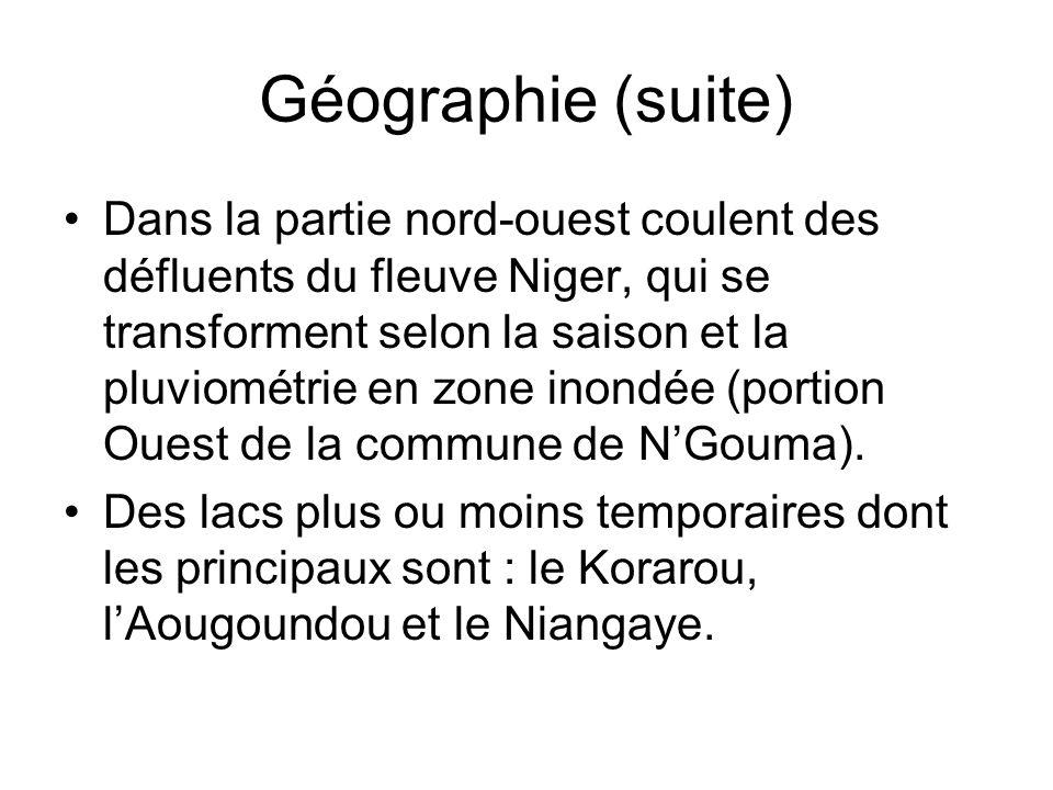 Géographie (suite) Dans la partie nord-ouest coulent des défluents du fleuve Niger, qui se transforment selon la saison et la pluviométrie en zone ino