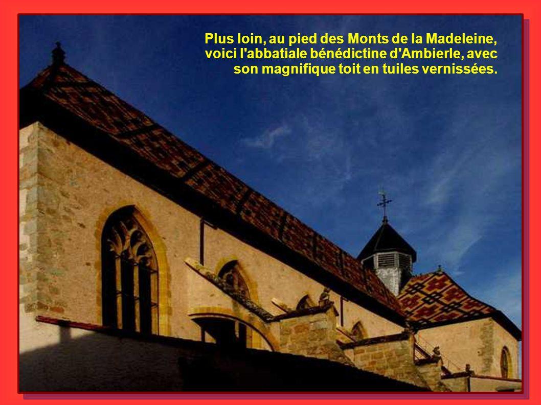 Plus loin, au pied des Monts de la Madeleine, voici l'abbatiale bénédictine d'Ambierle, avec son magnifique toit en tuiles vernissées.