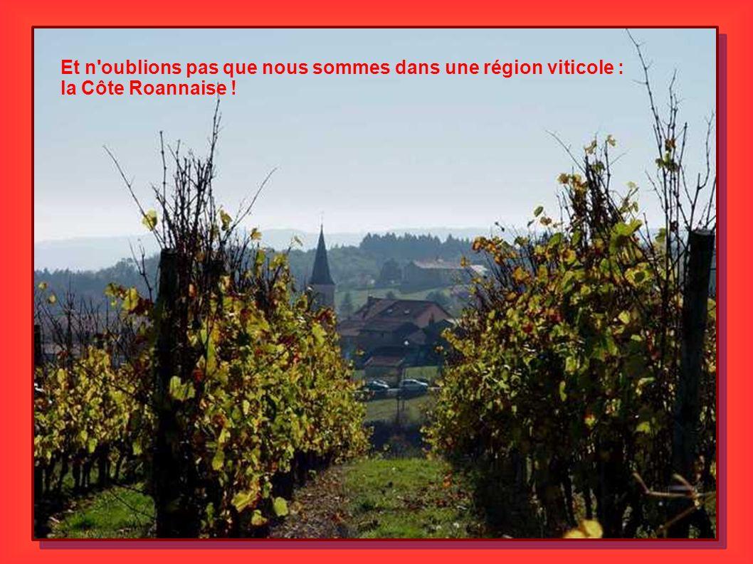 Et n'oublions pas que nous sommes dans une région viticole : la Côte Roannaise !