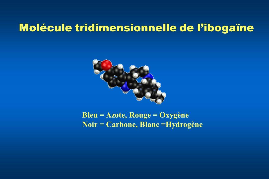 Molécule tridimensionnelle de libogaïne Bleu = Azote, Rouge = Oxygène Noir = Carbone, Blanc =Hydrogène